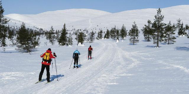 Las estaciones de esquí más cercanas a Madrid abren sus puertas