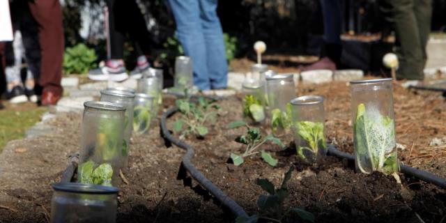 Rivas enseña a crear huertos para fomentar la agricultura ecológica