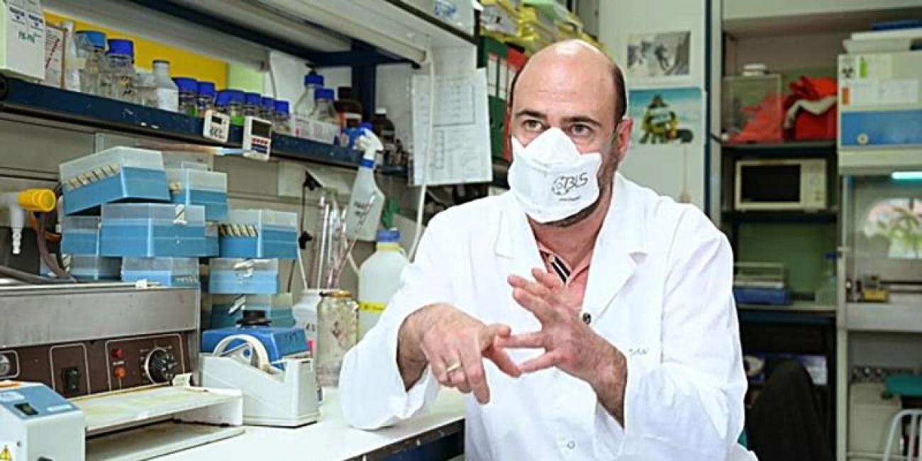 CSIC ensayará con animales una posible vacuna la próxima semana