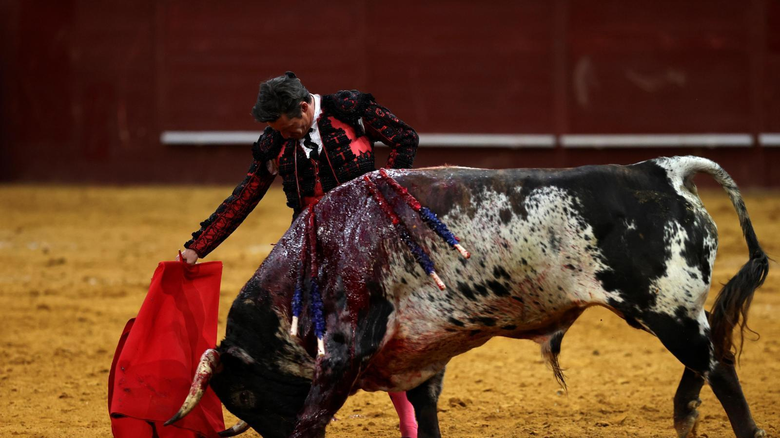 Diego Urdiales marca las diferencias con la calidad del toreo más puro
